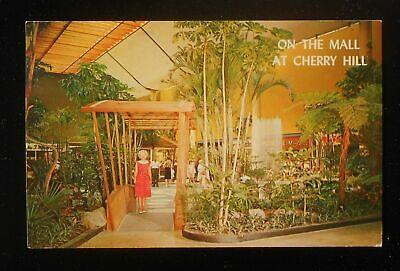 1960s Exotic Tropical Gardens Cherry Hil Shopping Center Mall Cherry Hill NJ (Nj Gardens Mall)