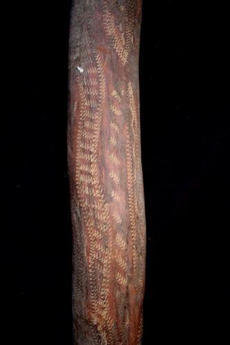 Old Aboriginal Didgeridoo - North-East Arnhem Land