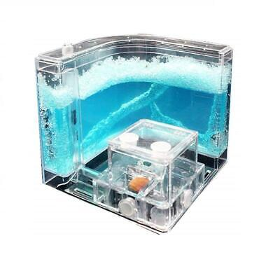 NAVADEAL Ant Farm Castle, Habitat Educational & Learning Science Kit Toy for