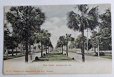 c1910 POSTCARD - MAIN STREET ( ROW of PALMS )   JACKSONVILLE,FLA.