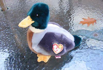 "Large 10"" BEANIE BABY JAKE, Beanie Buddy Original Mallard Duck,"