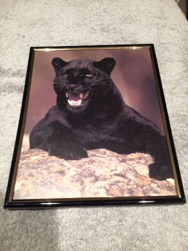 BLACK PANTHER 8X10 FRAMED PICTURE