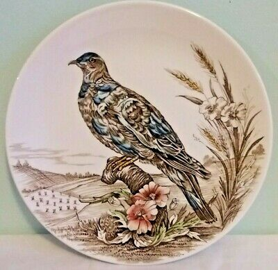 British Anchor Wild Birds of Heath & Moorland Pigeon 10 Inch Display Plate