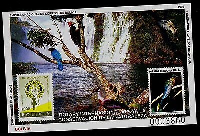 BOLIVIA  SCOTT# 864a  SOUVENIR SHEET  ROTARY INTERNATIONAL & NATURE CONSERVATION