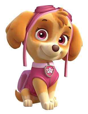 """Paw Patrol Skye Iron On Transfer 5""""x6.75"""" for LIGHT Colored Fabric"""