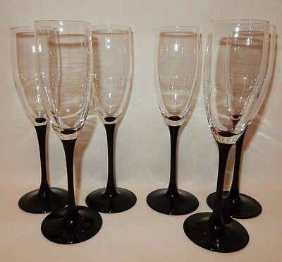 (Set 6 Black Stem Wine Champagne Flutes Glass Crystal Goblet 8 3/4