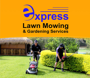 Lawn Mowing Business & Masters For Sale Parrearra Maroochydore Area Preview