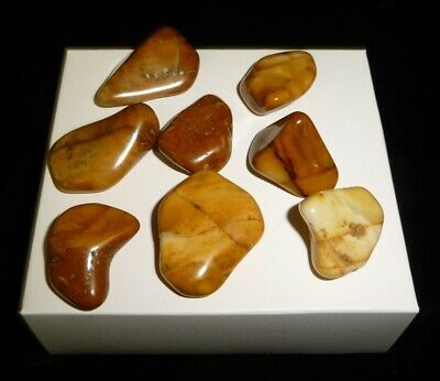 Dino: 8 Yellow Jasper Tumbled Chakra Stones, Brazil - 64 g - Reiki Crystal