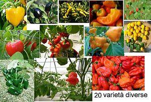 200-semi-20-varieta-diverse-pepper