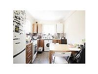 Spacious 5 bedroom flat with large terrace in the heart of Euston