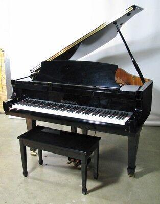 Dating knabe Klaviere