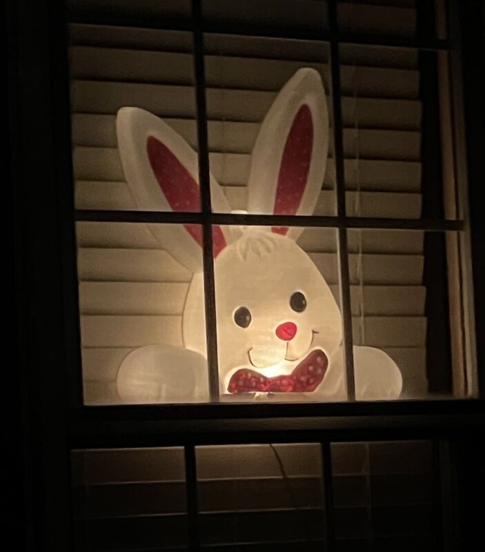 Blow Mold Easter Bunny Rabbit Window Light Lighted Yard Display Fence Clip