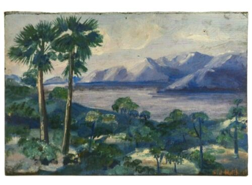 RARE SIDNEY HATCHELL (USA/20TH C) SIGNED VINT O/B LANDSCAPE HONOLUA BAY, HAWAII