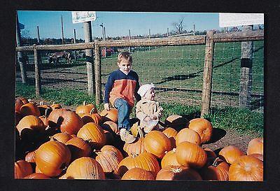 Babies On Halloween (Vintage Photograph Little Boy & Baby Girl Sitting Among Pumpkins on)