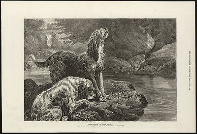 OTTERHOUND DOGS BY WATER ILLUSTRATED LONDON NEWS ANTIQUE PRINT ENGRAVING
