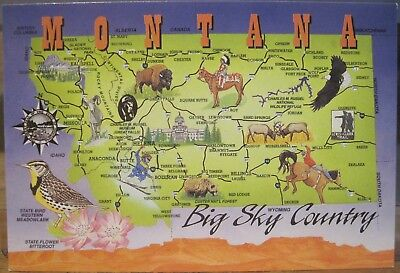 Postcard Montana Big Sky Country Map Meadowlark Bison Rodeo Debbie Groulx Art