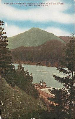 Postcard Washington St Columbia River Fish Wheel Ca1910 20 Cascades No Bank Rd