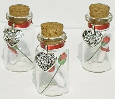 Message In A Bottle Ideas (Personalised Valentines Message In A Bottle Gift, Valentines Idea, Red Rose)