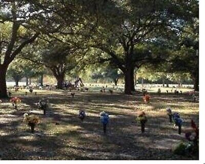 1 To 5 Cemetary Lots in Brookside Cemetary -  (Louder Rd. Houston Tx.)