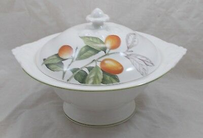 Villeroy & and Boch CASCARA large tureen NWoL
