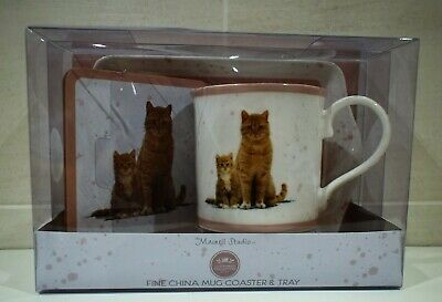 GINGER CAT CHINA MUG COASTER WITH CAT PICTURE & PLASTIC TRAY WITH CAT PICTURE ()