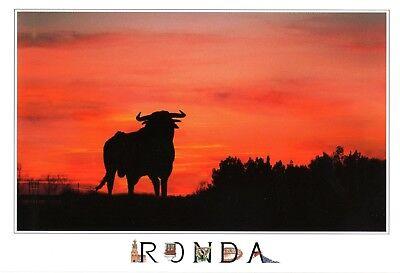HQ - XL  Postcard  neu, new, nuevo  -  Ronda - Malaga  -  toros -  Stier - Bulle
