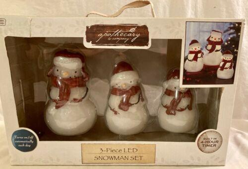 Apothecary & Company 3 Piece LED Snowman Set New