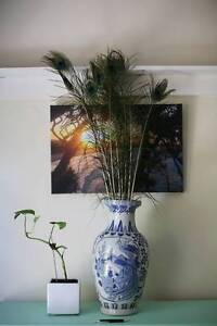 White and blue Chinese Vase Drummoyne Canada Bay Area Preview