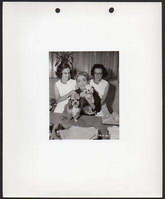 Joan Crawford W  Twin Daughters And Poodle Dogs Vintage Orig Photo