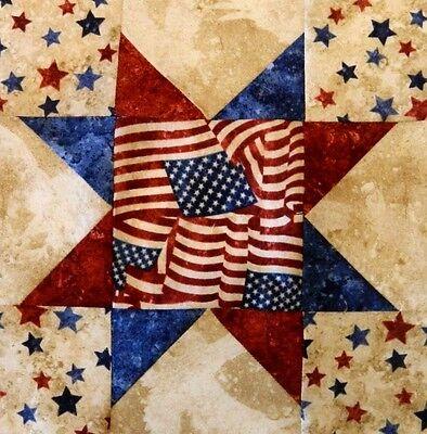 {12 } Pre~Sewn ~ Already Pieced Suzanne's Star Quilt Blocks ~ Americana