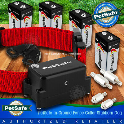 PetSafe Stubborn Dog Collar PRF-275-19 Receiver Fence + 4 Batteries Included Receiver Collar Battery