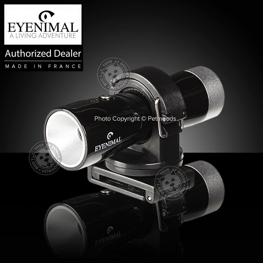 eyenimal-videocam-waterproof-outdoor-dog-collar-video-camera-action-w-hat-strap