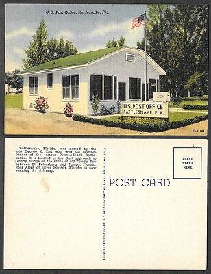 Old Florida Postcard - Rattlesnake Post Office
