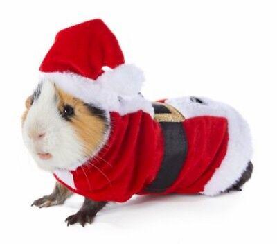 Guinea Pig Santa Small Pet Animal Holiday Christmas Costume Cute Fun