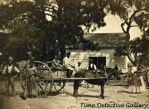 African Americans on Plantation, Edisto Island, SC 1862 - Historic Photo Print