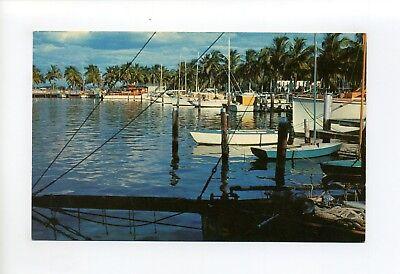 Fort Myers FL vintage postcard, Yacht Basin, boats