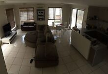 Room in Newmarket available Newmarket Brisbane North West Preview