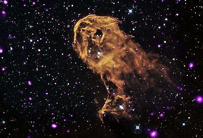 (Elephant Trunk Nebula Chandra X Ray Hi Gloss Space Poster Fine Art Print)