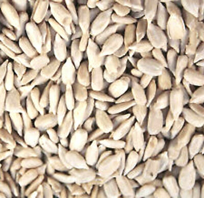 Trusty's Quality Premium Sunflower Hearts Seed Food Garden Wild Birds 2 X12.5kg
