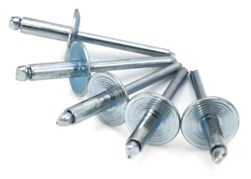 ALL Steel Pop Rivets 3/16 Diameter (#6) Oversize Large Flange Blind Rivets