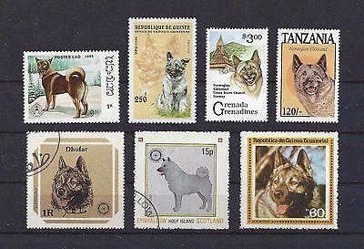 Dog Art Head & Body Study Postage Stamp Collection NORWEGIAN ELKHOUND 7x CTO MNH