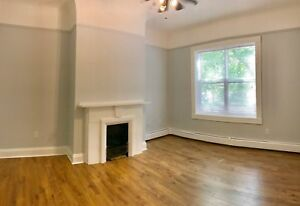 READY NEW RENO 3 BEDROOMS UNIT, 5 APPLIANCES, DUNCAN ST, DOG OK