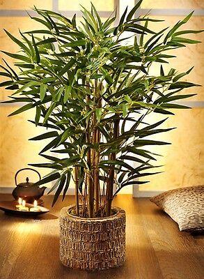 Künstliche BAMBUSPALME 60cm Kunst Bambus Palme im Topf Kunst-Bambus Wohndeko Neu
