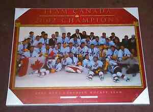 TEAM CANADA Olympics 2002 Hardwood Poster - New