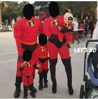 The Incredibles Family Costume (The Incredibles family set. INCLUDES Mr and Ms plus Violet, Dash and Jack Jack)