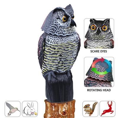Rabbit Bird Pest Control Repellent Horned Owl Decoy Deterrent Natural Enemy Real