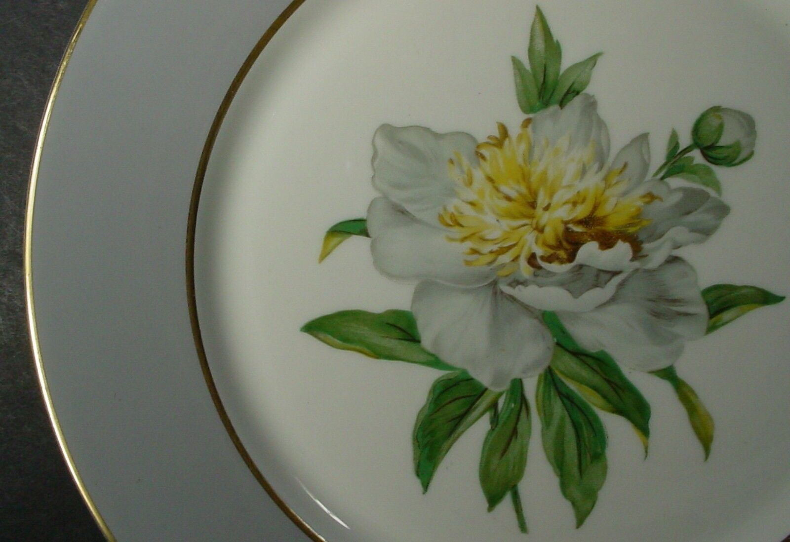 Купить Princess Golden Peony - PRINCESS china GOLDEN PEONY pattern Set of 2 Dinner Plates - 10-1/4