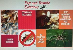 Pest control Parramatta Parramatta Area Preview