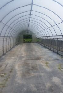 Greenhouse/hoophouse for sale