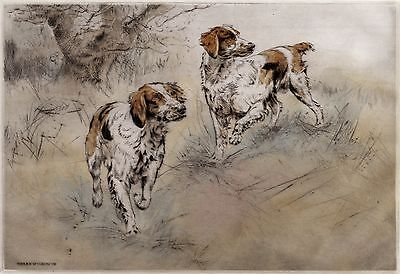 BRITTANY SPANIEL DOG LIMITED EDITION PRINT DRYPOINT ENGRAVING - Henry Wilkinson